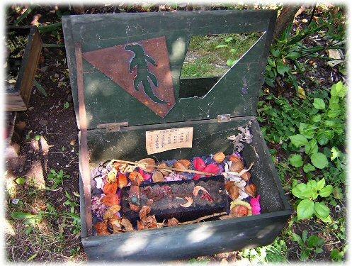 Lizard Memory Box - open