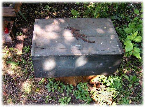 Lizard Memory Box